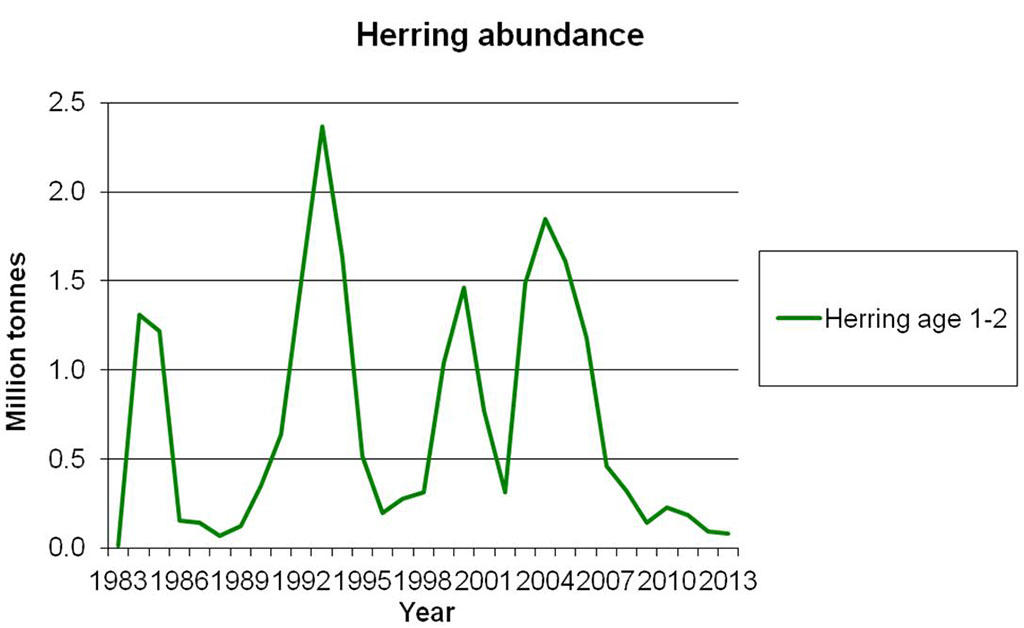 Figure 4.3.50. Abundance of age 1 and 2 Norwegian Spring-spawning herring (calculated by VPA). This is a good indication of the abundance of young herring in the Barents Sea.
