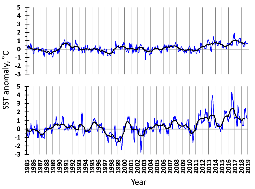 Figure 3.1.9. Sea surface temperature anomalies in the western (upper) and eastern (lower) Barents Sea in 1985–2018. The blue line shows monthly values, the black one – 11-month running means.