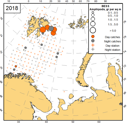 Figure 3.3.15. Amphipod distribution, based on trawl stations covering the upper 60 m in the Barents Sea during August-October 2018.