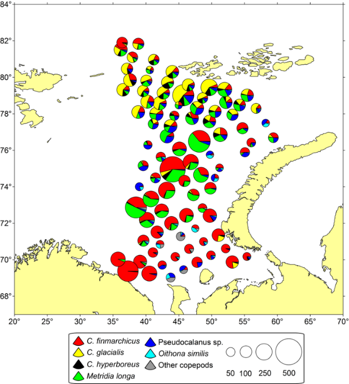 Figure 3.3.8. Biomass (mg wet-weight m-3) of the most numerous copepod species (surface to sea floor) in the Barents Sea (based on the PINRO samples from the BESS during August-September of 2017).