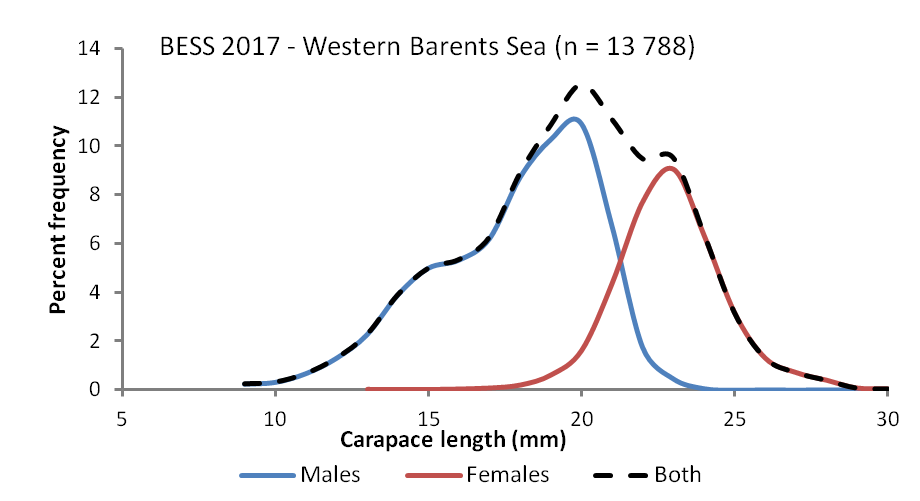 Figure 3.4.2.8. Size and sex structure of catches of the Northern shrimp (Pandalus borealis) in the western Barents Sea, August–October 2017.