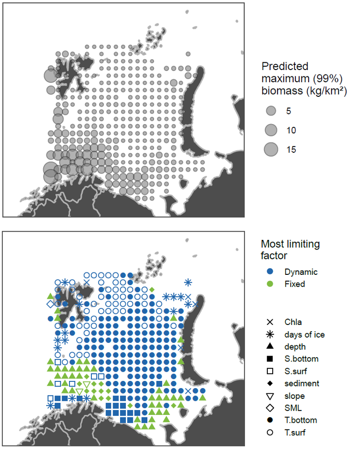 Figure 3.7.7. South boreal fishes (Gadiculus argenteus, Lophius piscatorius, Merlangius merlangus, Merluccius merluccius, Phycis blennoides) data from ecosystem survey 2013. Top: max predicted abundance, bottom: symbols show limiting habitat factors: green if they are temporally fixed (sediment, depth, slope), blue if they are temporally dynamic (all other parameters), grey if they are only weakly limiting (predicted maximum biomass >= 25% of the species-predictor QGAM model maximum).