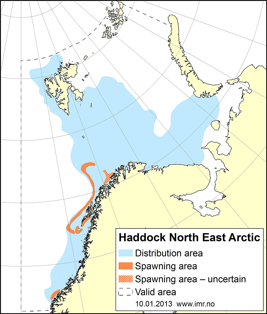 Figure 2.4.14. Distribution area for Northeast Arctic haddock.