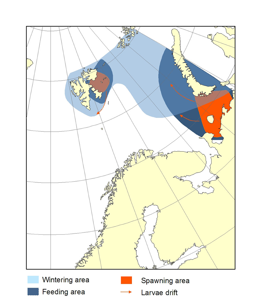 Figure 2.4.19. Distribution area for polar cod.