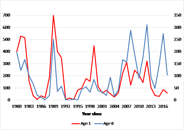 Figure 4.3.1. Fluctuation of capelin at age 0 (blue line) and 1 (red line) for the cohorts 1980–2017.