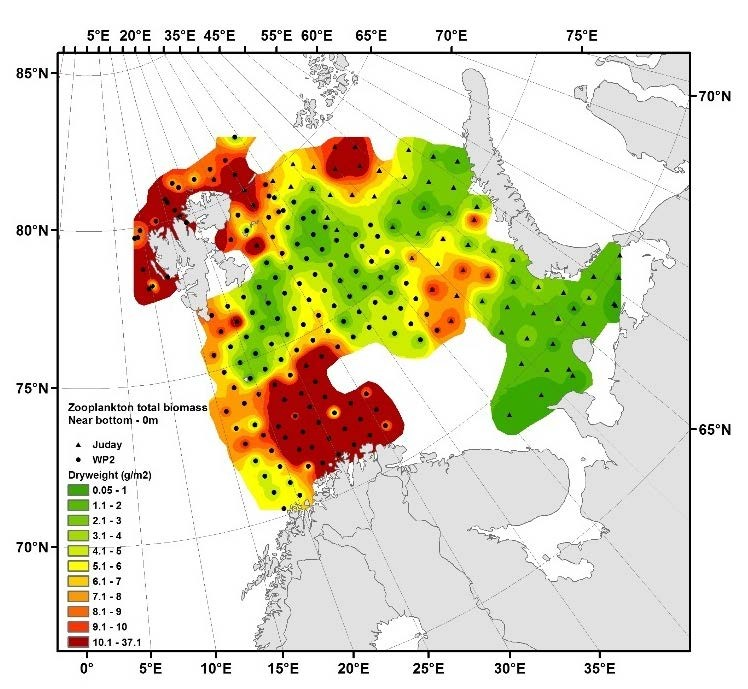 Figure 3.3.1. Distribution of zooplankton biomass (dry weight, g m-2) from bottom-0 m in autumn 2016 (upper panel). Data based on samples obtained during the joint Norwegian-Russian (IMR/PINRO) ecosystem survey in late August – early October. Interpolation made in ArcGIS v.10.3, module Spatial Analyst, using inverse data weighting (default settings).