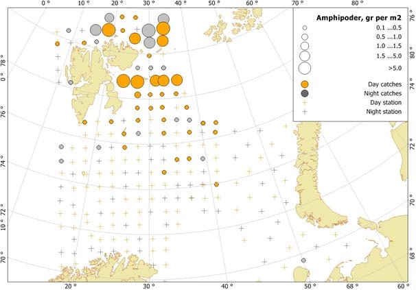 Figure 3.3.18. Hyperiid amphipod distribution, based on trawl stations covering the upper water layers (60-0 m), in the Barents Sea in August-October 2016. Figure from Eriksen et al. (2017).