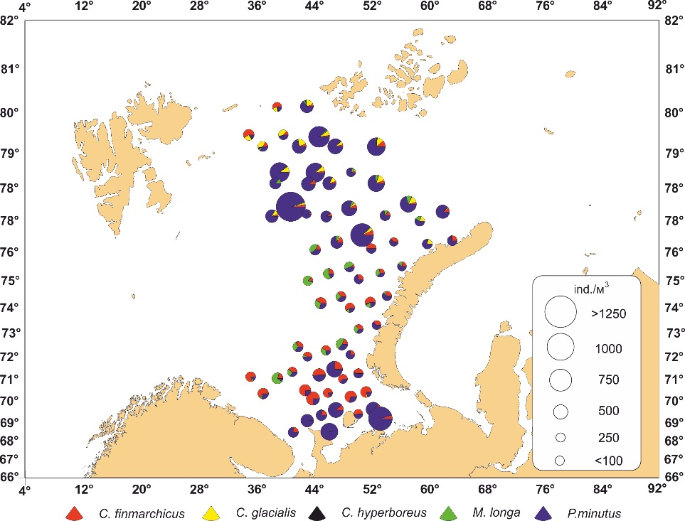 Figure 3.3.9. Abundance (ind. m-3) of the most abundant copepod species without Oithona similis (bottom-0m) in the eastern Barents Sea (based on the PINRO samples from the PINRO/IMR ecosystem survey in August-September 2015).