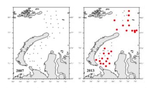 Figure 3.4.11 Station coverage of PINRO trawl surveys and ecosystem surveys into the Kara Sea and St. Anna trough in 2007 and 2013 without (black dots) or with (red dots) snow crab records (according to Strelkova, 2016)