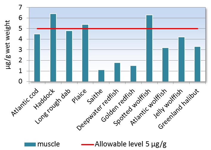 Figure 3.9.6.8a. Average arsenic concentration in fish muscle