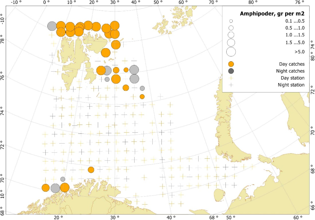 Figure 3.3.12. Amphipods distribution, based on trawl stations covering the upper water layers (0-60 m), in the Barents Sea in August-October 2017.