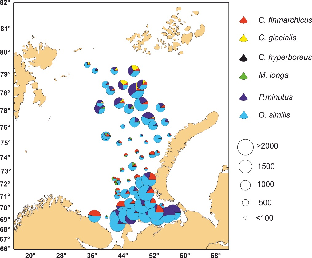 Figure 3.3.6. Abundance (ind. m<sup>-3</sup>) of the most numerous copepod species (bottom-0 m) in the Barents Sea (based on the PINRO sa PINRO/IMR ecosystem survey in August-September 2016)