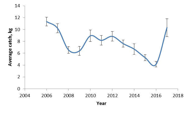 Figure 3.4.13. Average catches of the Northern shrimp (<em>Pandalus borealis</em>) in the Barents Sea during ecosystem surveys 2006-2017