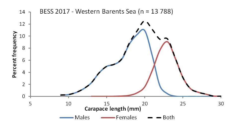 Figure 3.4.15. Size and sex structure of catches of the Northern shrimp (<em>Pandalus borealis</em>) in the western Barents Sea, August-October 2017