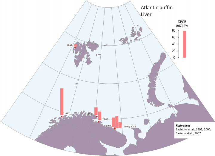 Levels of liver-ΣPCB in Atlantic puffin