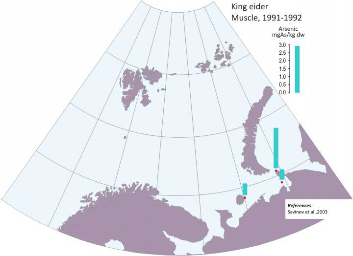 Levels of Arsenic (As) in King eider