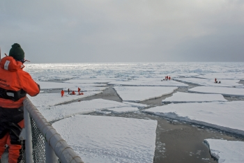 Research in sea ice. Photo: Rudi Caeyers