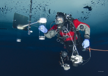 Installation of sediment traps under the sea ice. Photo: Peter Leopold, Norwegian Polar Institute