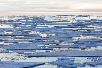 Seaice seascape, Barents Sea (Photo: NPI)