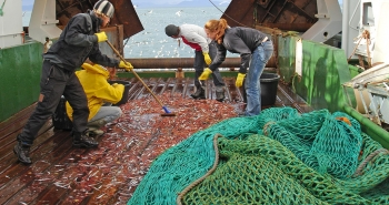 Trawling activity