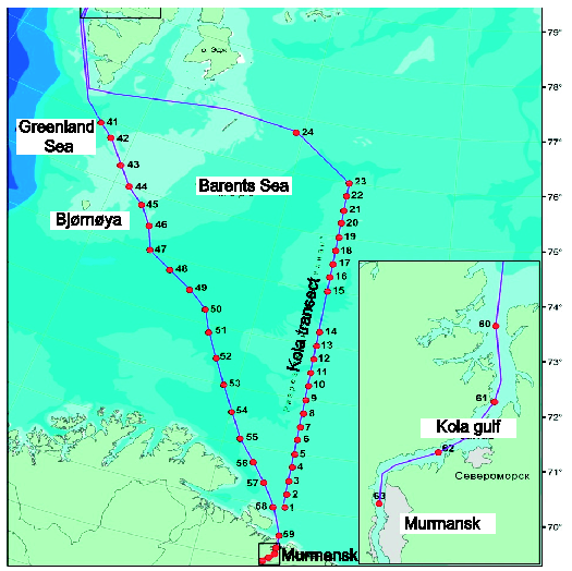 "Sections and complex stations (MMBI map) made in the outfit 9-23 November 2013 on the research vessel ""Dalnye Zelentsy"": Kola transect – stations 1-23; random transects from Svalbard to the Kola Bay – stations 41-59; transect along the Kola Bay – stations 60-63. Source: MMBI"