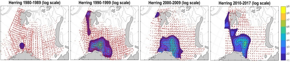 Figure 3.5.14. Distribution of 0-group herring abundance in the Barents Sea during 1980s, 1990s, 2000s, and 2010s. Abundance estimates were log-transformed (natural logarithms) before mapping. Fish density varied from low (blue) to high (yellow). Red dots indicate sampling locations. The map is taken from Eriksen et al. (Progress in Oceanography, under revision).