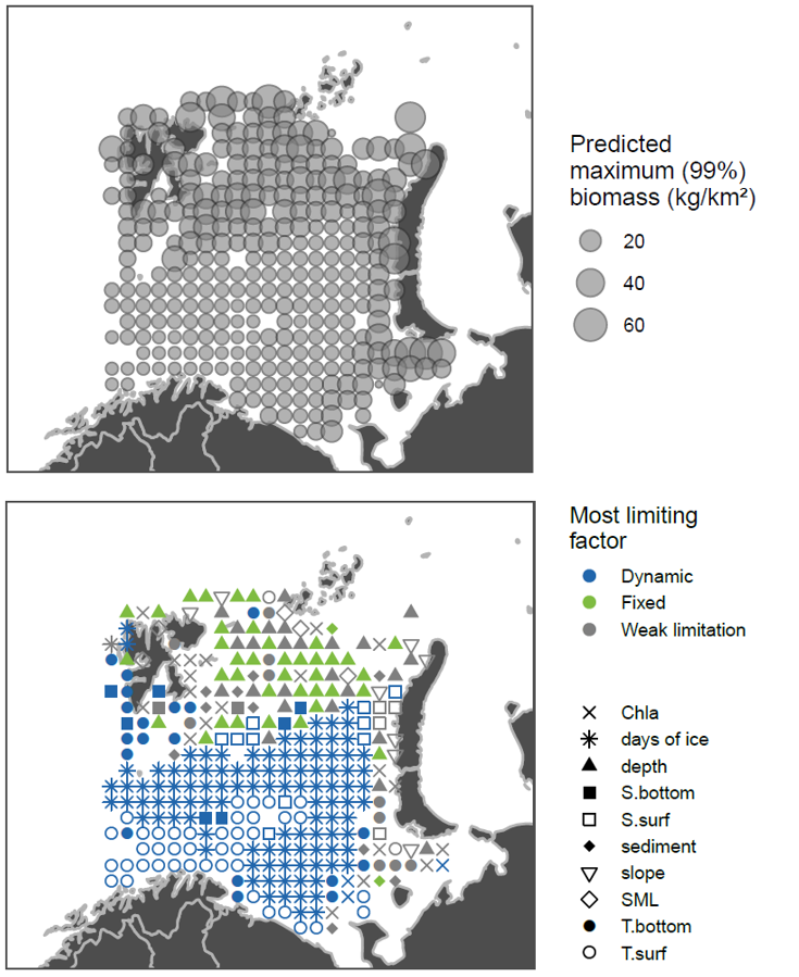 Figure 3.7.3. Mainly Arctic fishes (Cottunculus microps, Eumicrotremus spinosus, Gymnocanthus tricuspis, Liparis bathyarcticus) data from ecosystem survey 2013. Top: max predicted abundance, bottom: symbols show limiting habitat factors: green if they are temporally fixed (sediment, depth, slope), blue if they are temporally dynamic (all other parameters), grey if they are only weakly limiting (predicted maximum biomass >= 25% of the species-predictor QGAM model maximum).