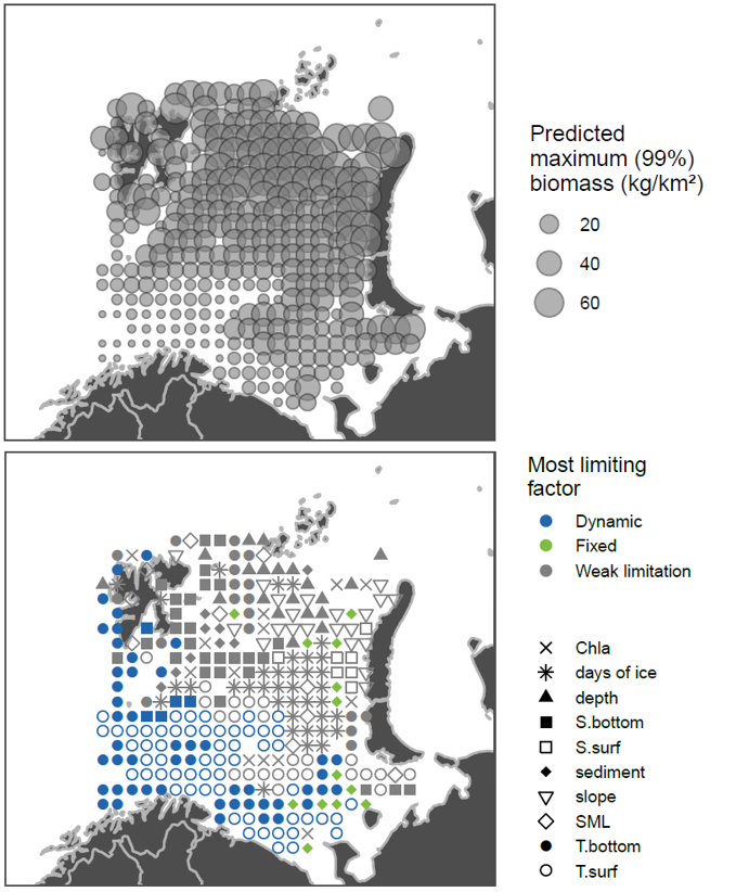 Figure 3.7.4. Arctic boreal fishes (Leptagonus decagonus, Triglops pingelii) data from ecosystem survey 2013. Top: max predicted abundance, bottom: symbols show limiting habitat factors: green if they are temporally fixed (sediment, depth, slope), blue if they are temporally dynamic (all other parameters), grey if they are only weakly limiting (predicted maximum biomass >= 25% of the species-predictor QGAM model maximum).