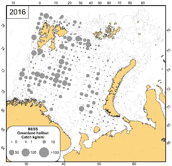 Figure 3.6.12 Greenland halibut distribution (specimens/nautical mile) during August-September 2016 based on the Joint Ecosystem Survey data.