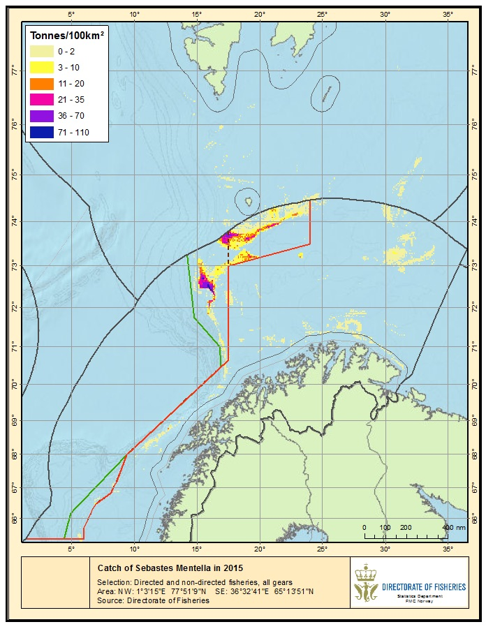 Figure 3.9.1.4. Sebastes mentella in Areas 1 and 2. Location of S. mentella catches by Norwegian fishing vessels in 2015, both in a directed fishery and as bycatch.